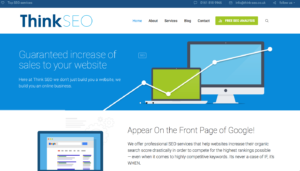 Think SEO home page